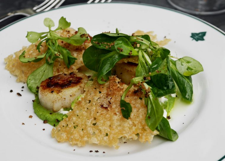The Ivy Scallops