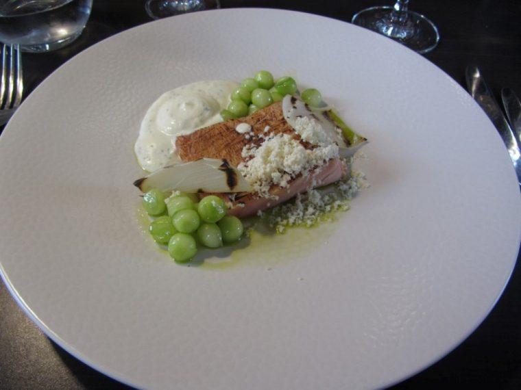 Coda - salmon starter