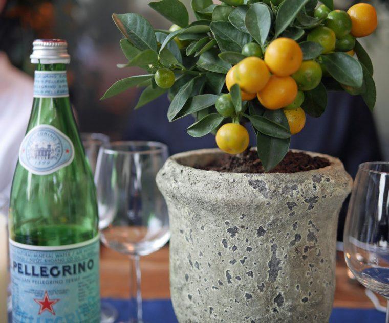 S Pellegrino Table