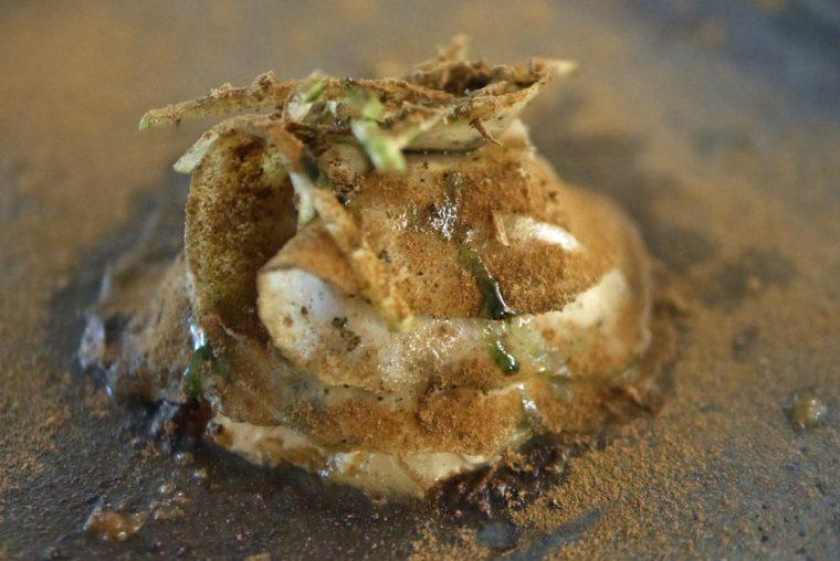 celeriac-truffle-yolk-apple-dates-copy