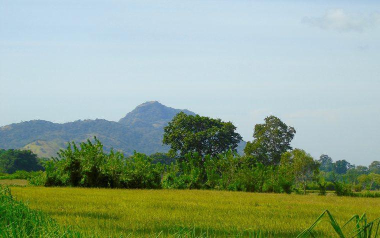 Wellaweya Sri Lanka