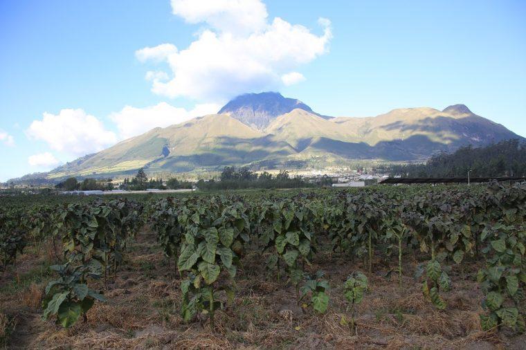 Quito Ecuador Otavalo Plateau