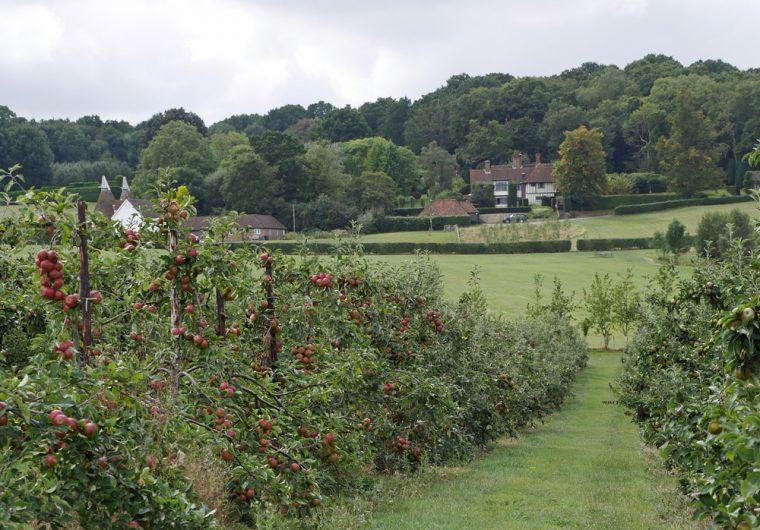 hush-heath-winery-approach-2