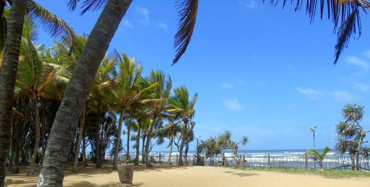Siddhalepa beach ayuveda