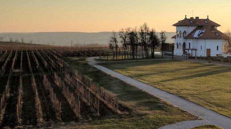 Romania, New Year, New Wines