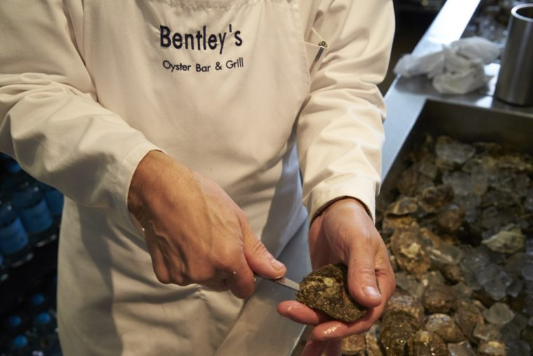 Oyster shucking