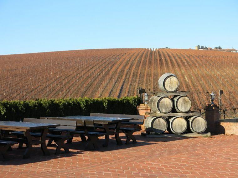 Cramele Recas Wine Slopes