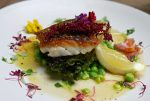 Duke of Sussex Hake