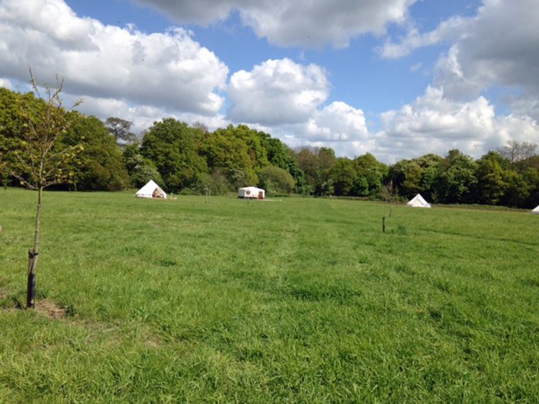 Field - the setting for Land Girls Experience