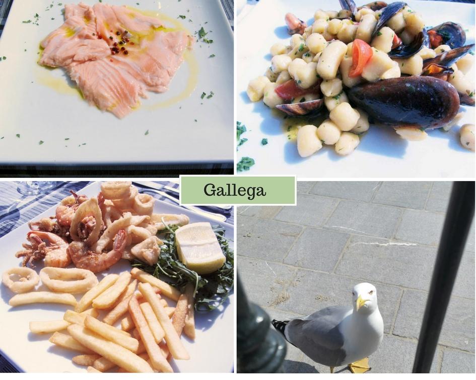 Gallega - Liguria