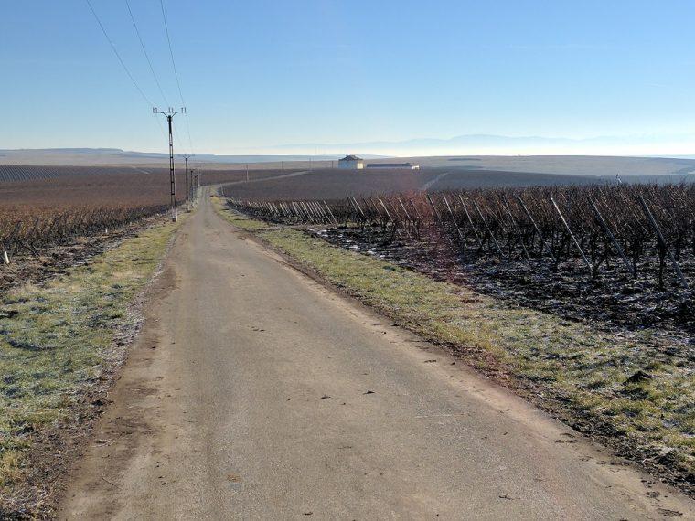 Romania Road To Cramele Recas