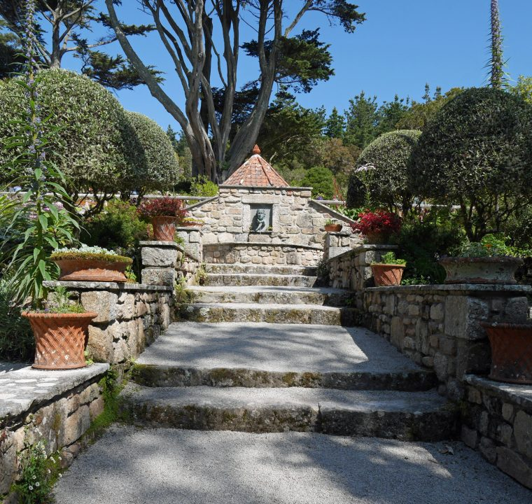 Tresco Abbey Gardens 4