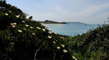 A Short Break in the Isles of Scilly