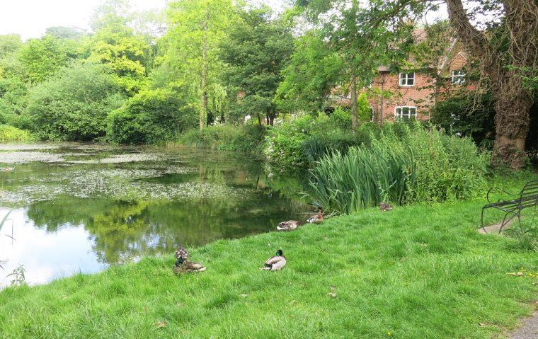 Ewelme Pond InntTravel