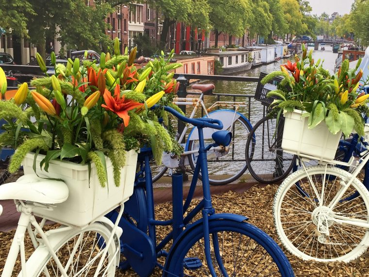 canals and flowers