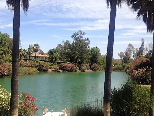 Natural Water Lake Skinny Dip 100% natural