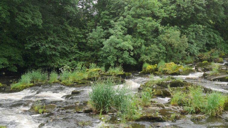 Galgorm Estate River Close