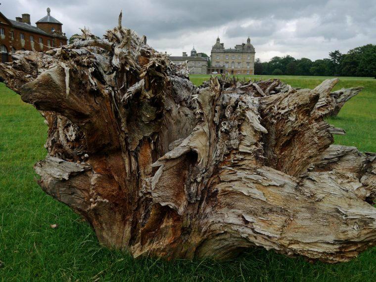 Houghton Hall Art 3