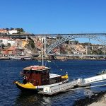The Grape Harvest  –  Porto and the Douro