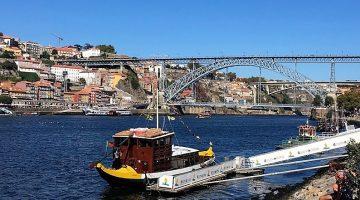 The Grape Harvest  –  Porto and the Douro