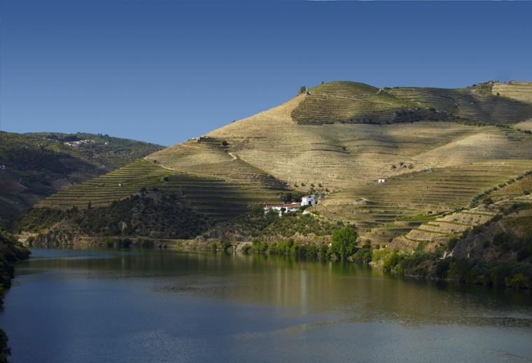 the-vintage-house-douro_SC-101