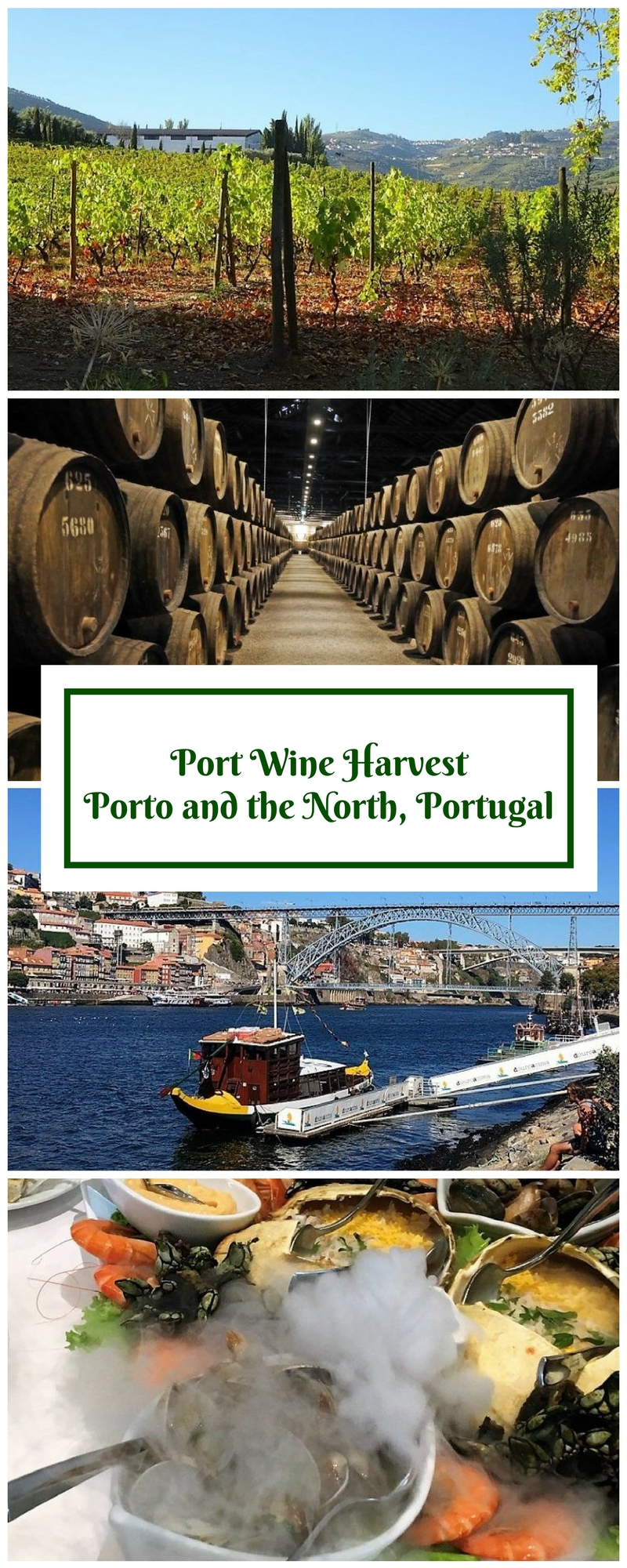 Port Wine Harvest - Porto, Northern Portugal