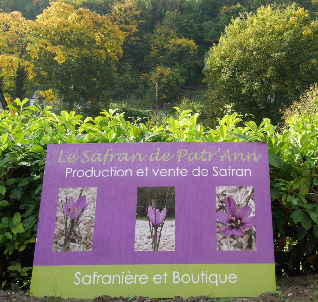 Saffron - Wallonia