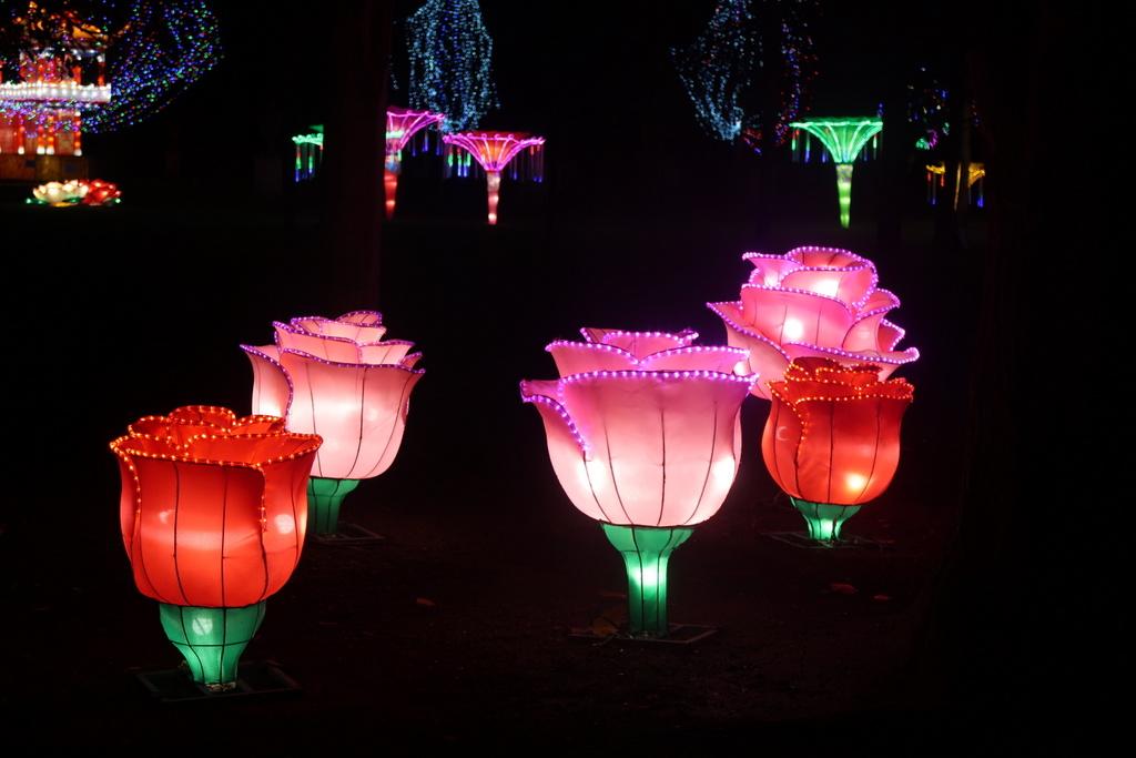 Magical Lantern Festival - flowers