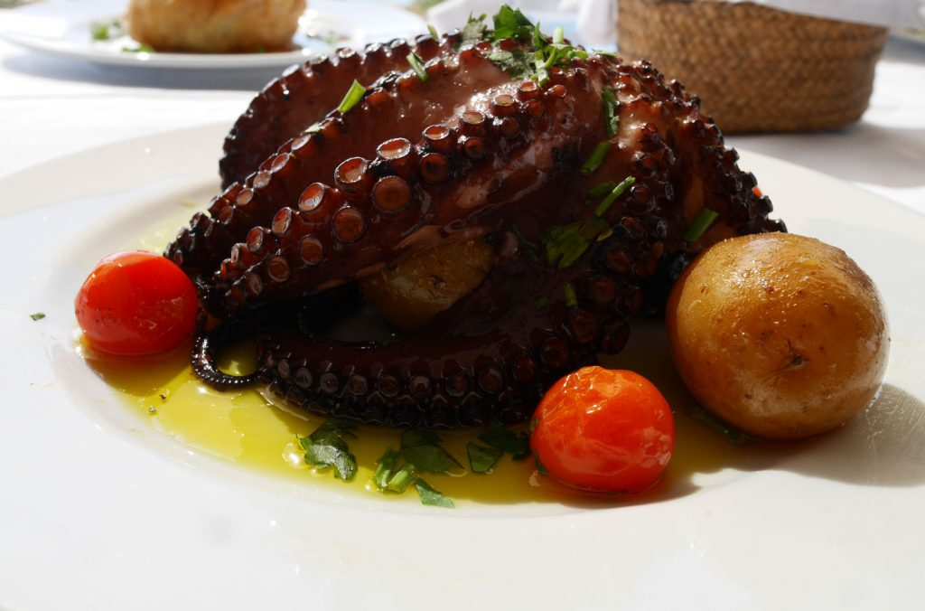 Octopus - Lake Alqueva Restaurant - Alentejo Portugal