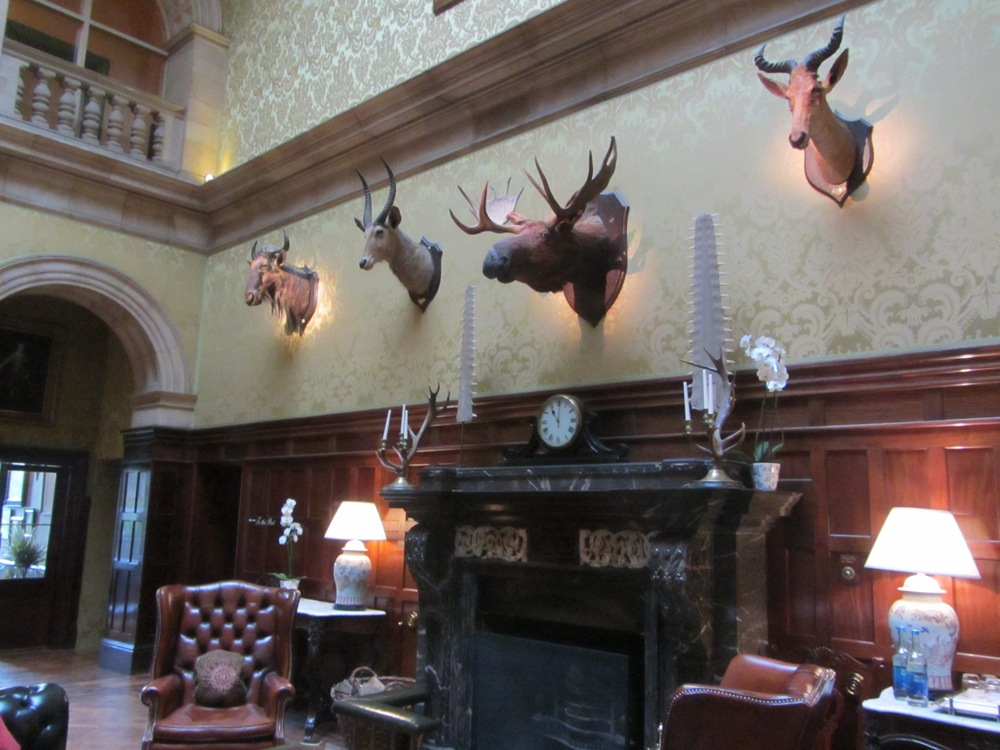 Stapleford Park - hunting trophies