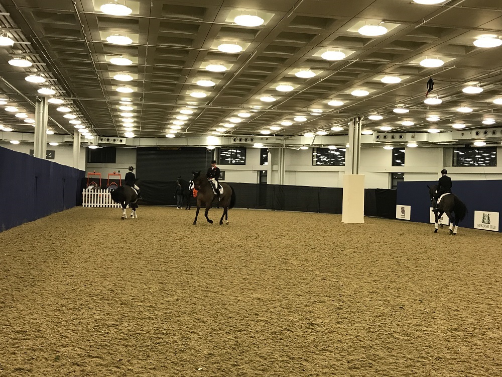 Olympia Horse Show Backstage Practise Ring