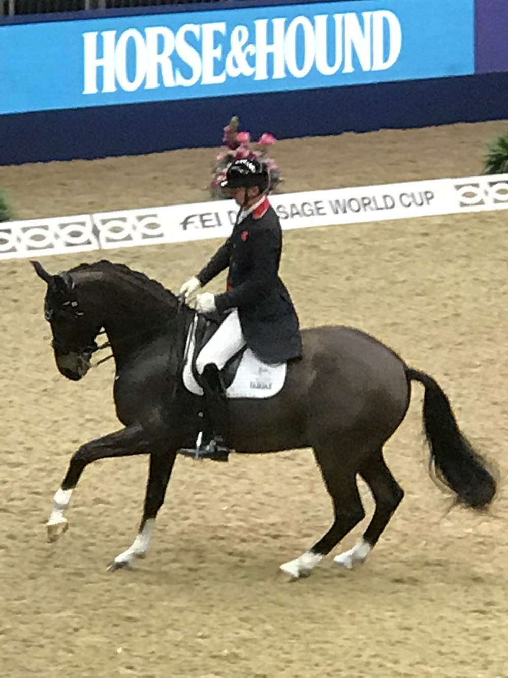 Olympia Dressage Pirouette - fei world cup™