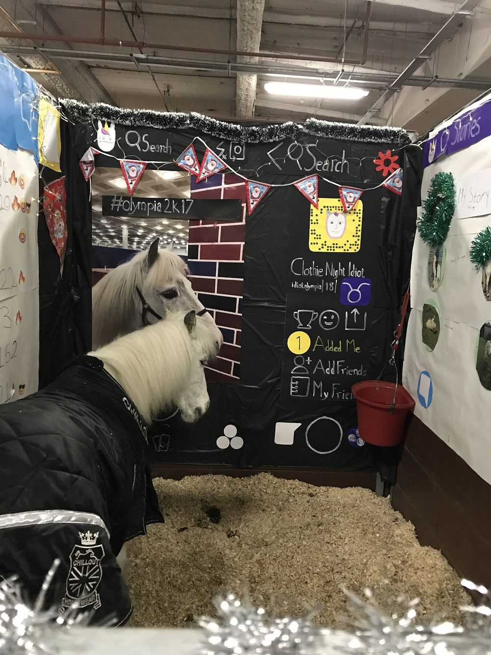 ow Shetland decorated stable