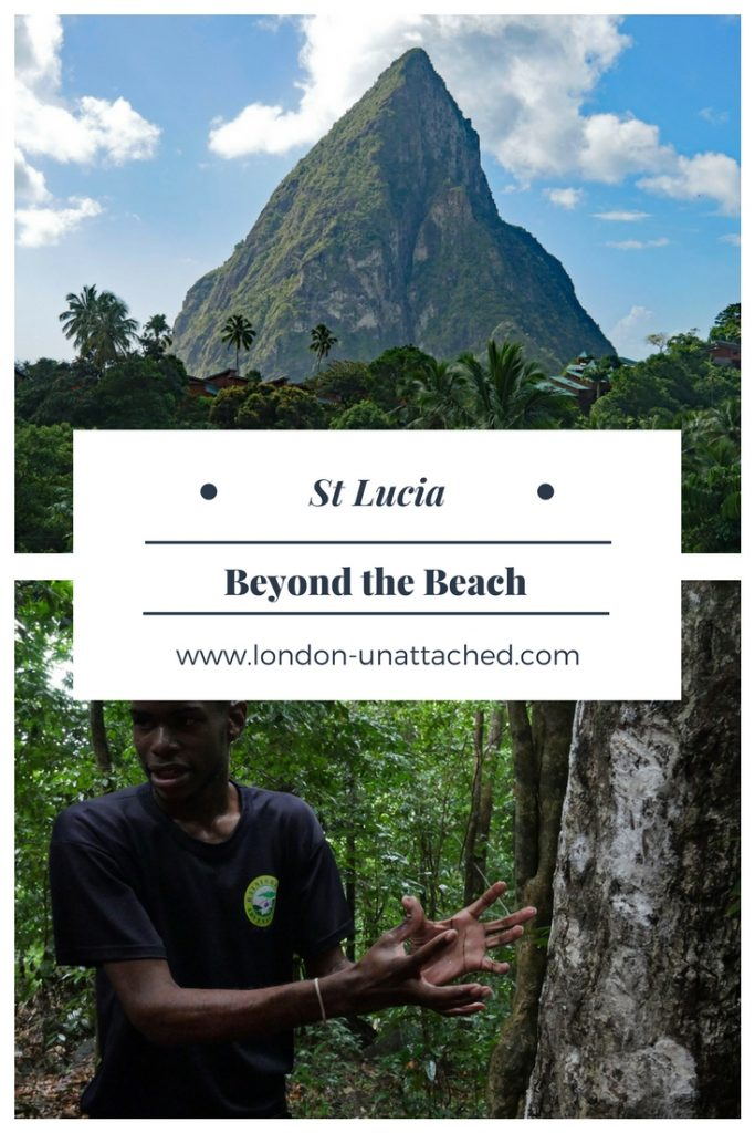 st lucia activities _ st lucia caribbean _ st lucia hotel chocolat _ st lucia rainforest _ st lucia volcano