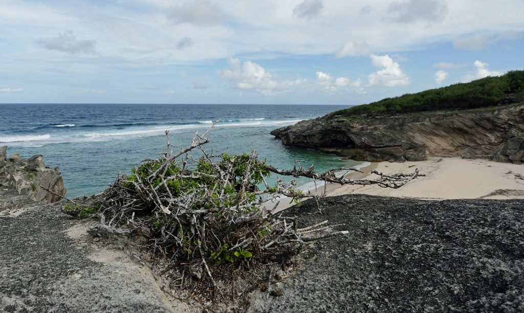 Rodrigues Island - Hiking round the eastern crics