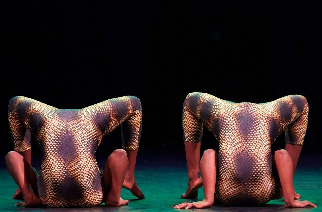 Circus Abyssinia