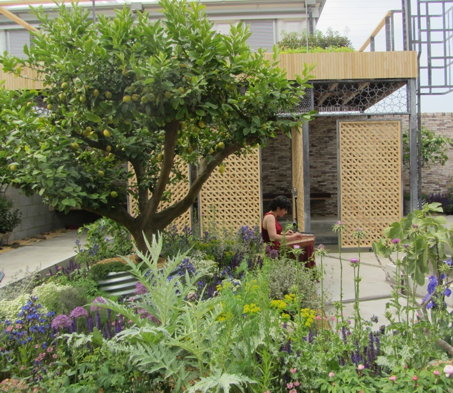 Chelsea Flower Show - a garden for refugees