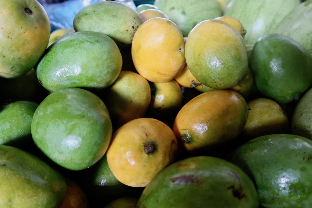 Barbados Mangoes