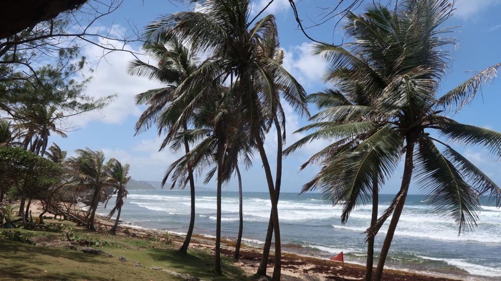 Barbados - Bathsheba