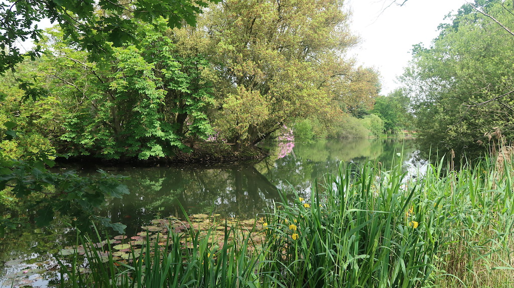 Lake at Stoke Place