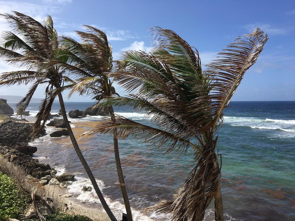 View From Atlantis Hotel, Barbados