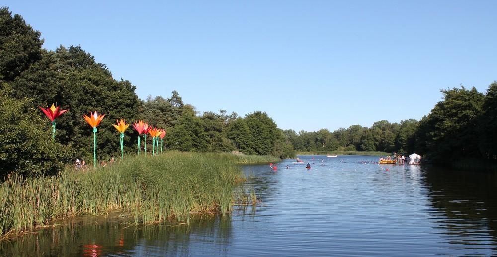 Latitude 2018 - Lake swimming