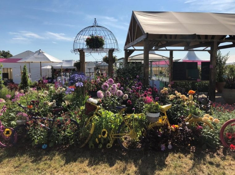 RHS Hampton Court Flower Show - Growing Community Garden