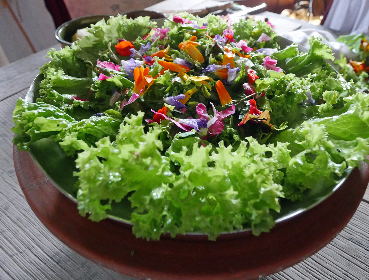 Tudor style Salad at Mary Ardens Farm