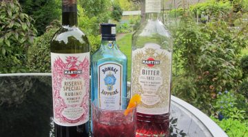 Making the Perfect Negroni with MARTINI