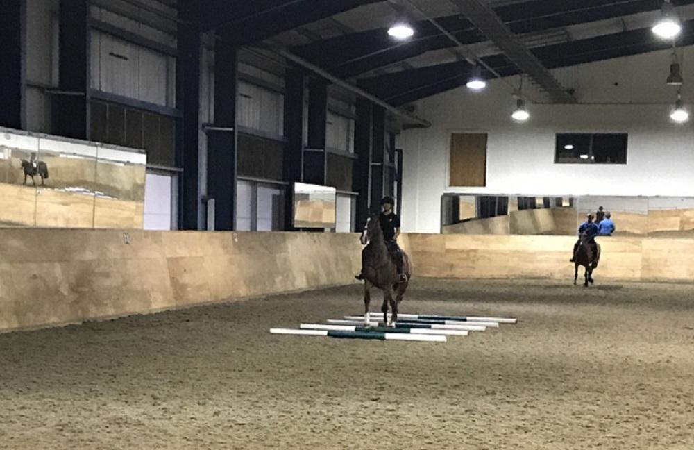 Kings Troops Horses - Pole work Trotting