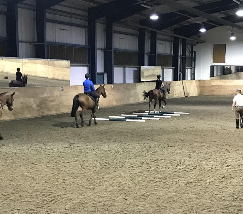 Kings Troops Horses - Pole work walking