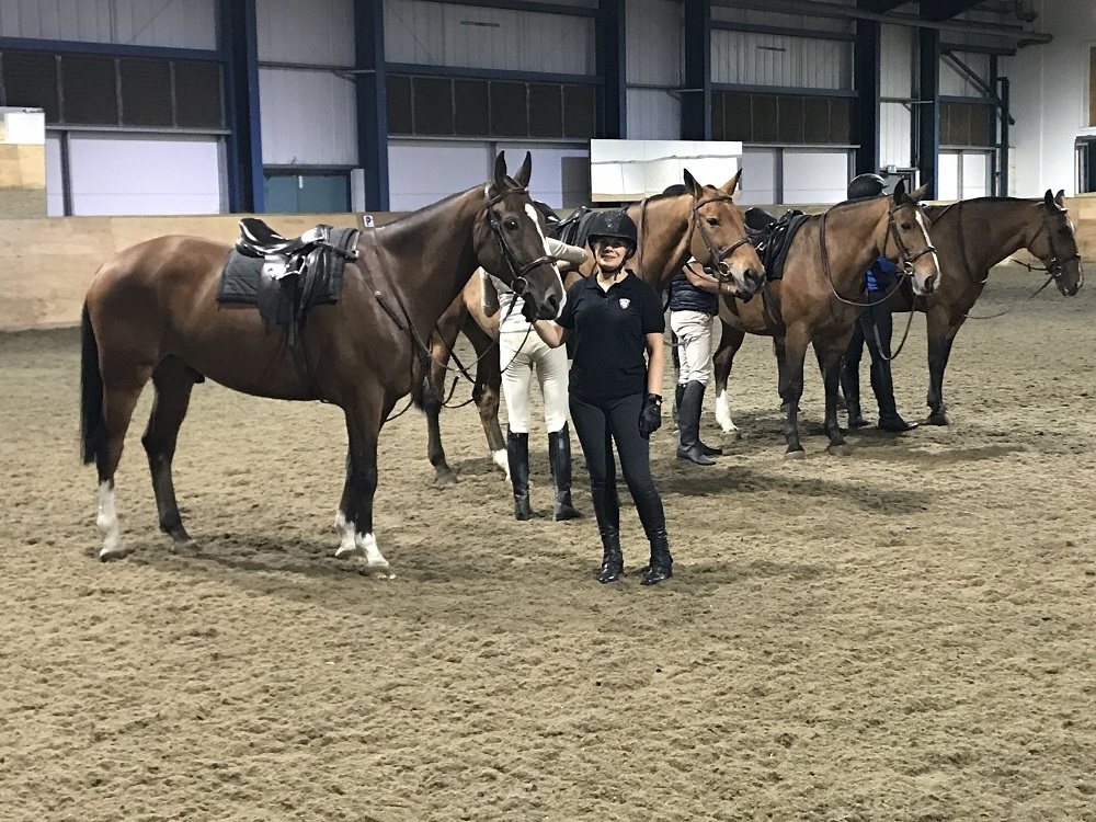 Kings Troops Horses - Riding Lesson