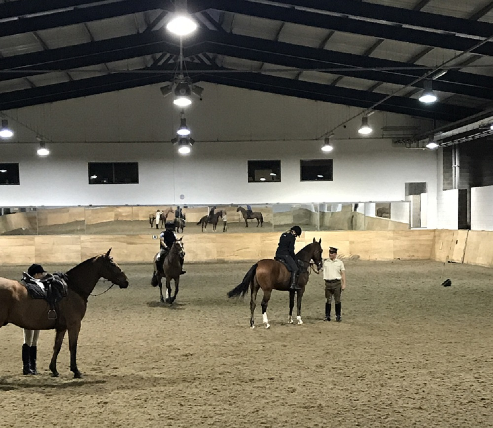 Kings Troops Horses - final checks