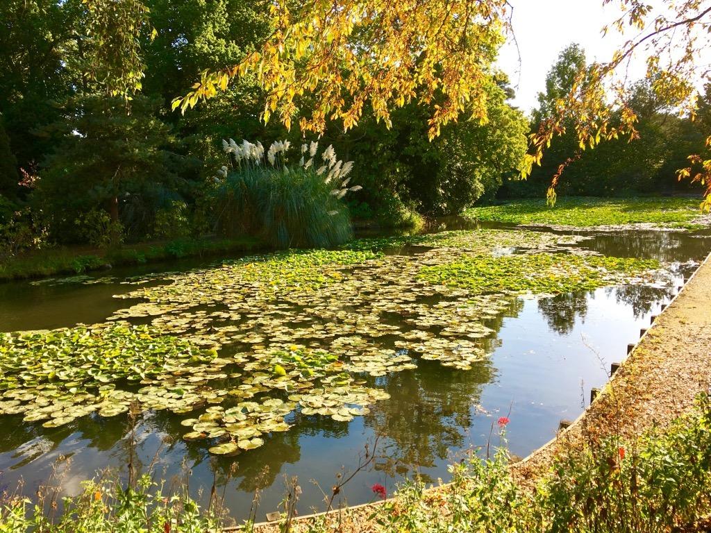 Tylney Hall Hotel water garden
